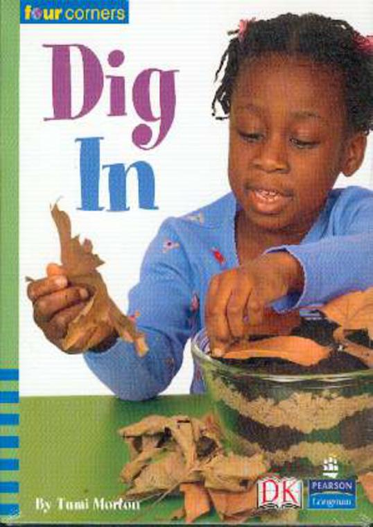 Image for Dig in