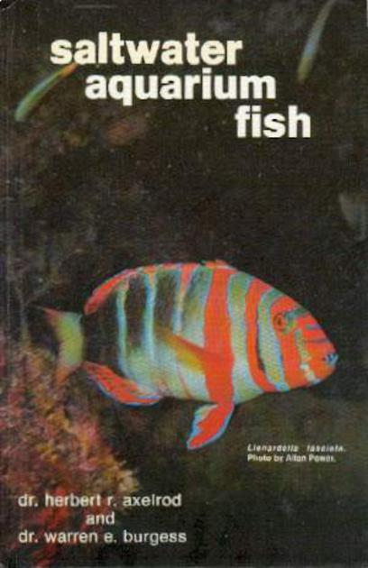 Image for Saltwater Aquarium Fish