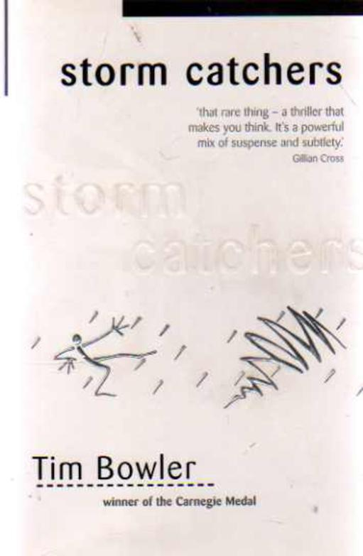Image for Storm Catchers