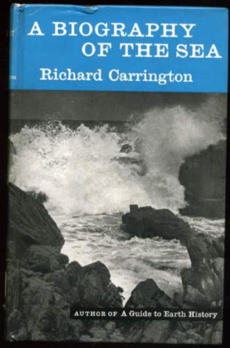 Image for A Biography of the Sea