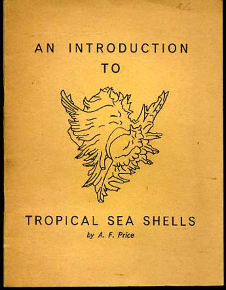 Image for An Introduction to Tropical Sea Shells