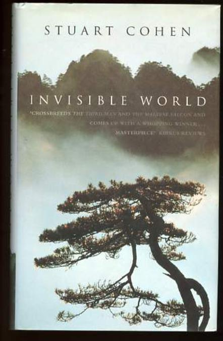 Image for Invisible World