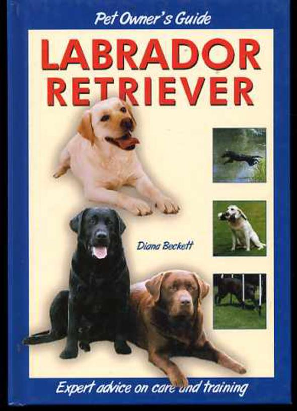 Image for Pet Owner's Guide to the Labrador Retriever