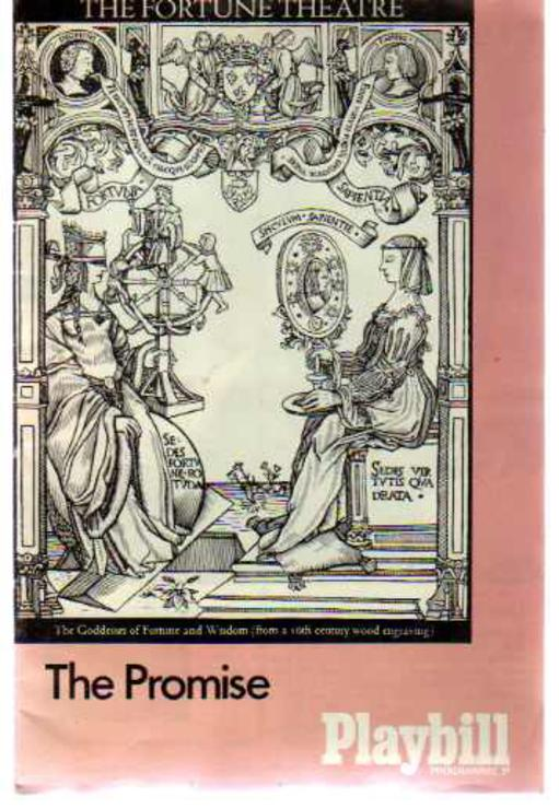 Image for The Promise - Fortune Theatre Programme