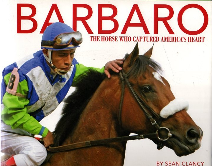Image for Barbaro : The Horse Who Captured America's Heart