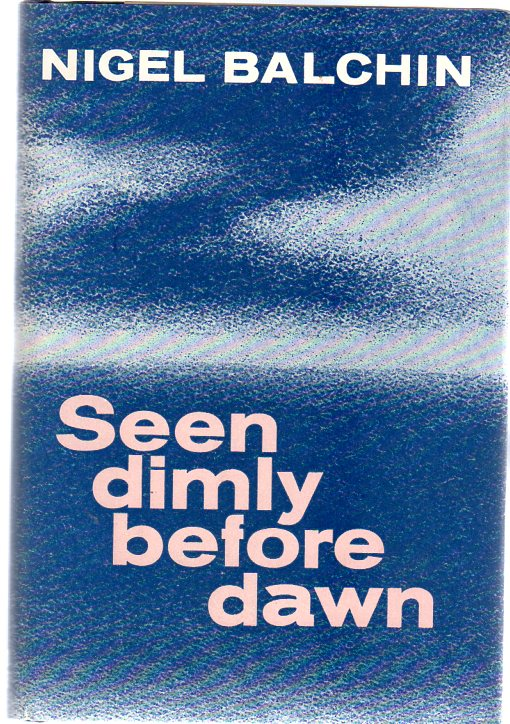 Image for Seen Dimly Before Dawn : A Novel