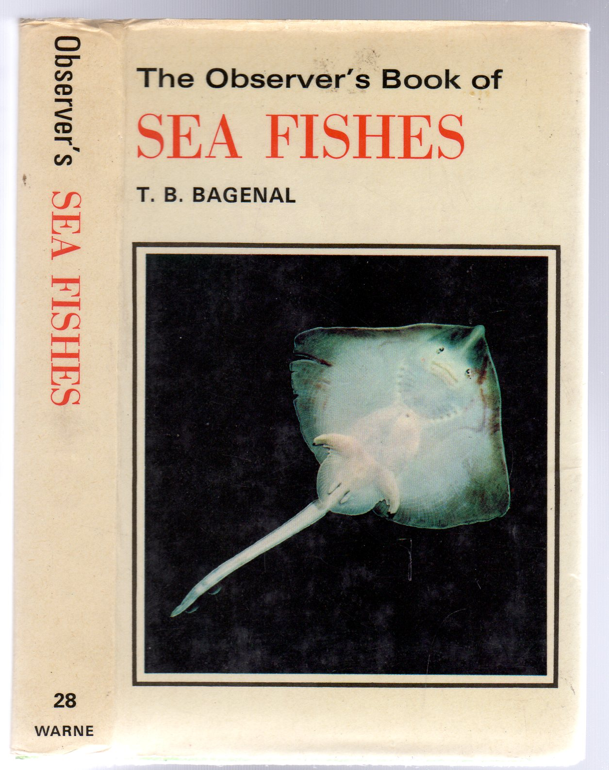 Image for The Observer's Book of Sea Fishes