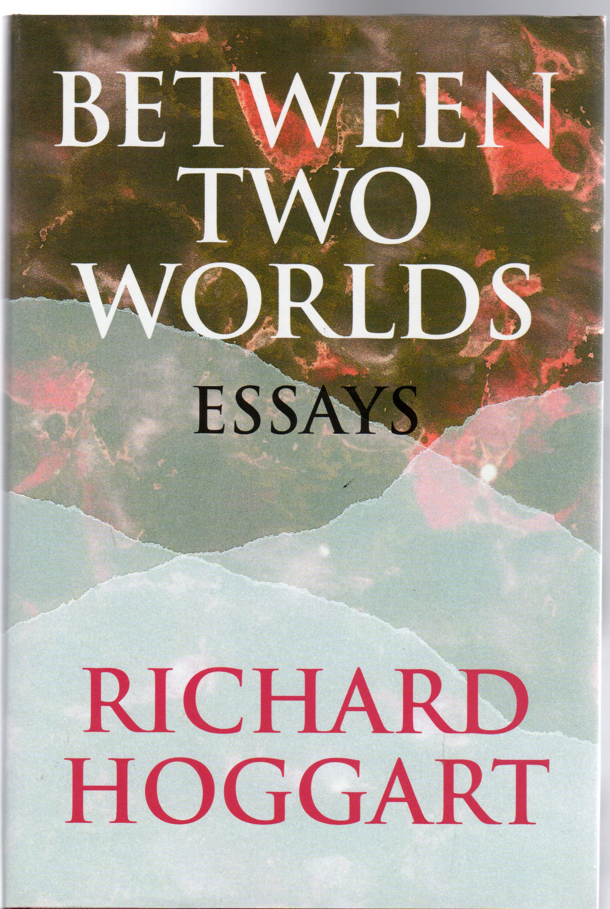 Image for Between Two Worlds : Essays