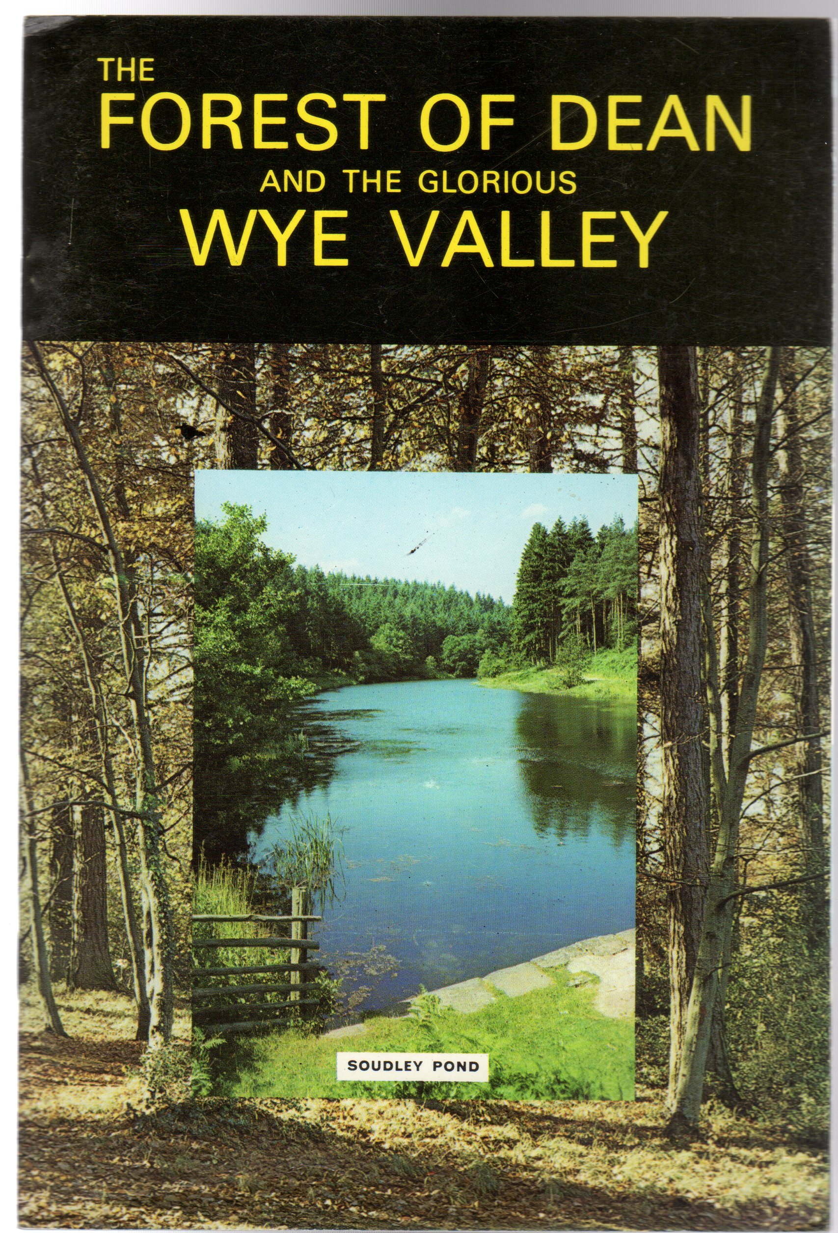 Image for The Forest of Dean and the Glorious Wye Valley