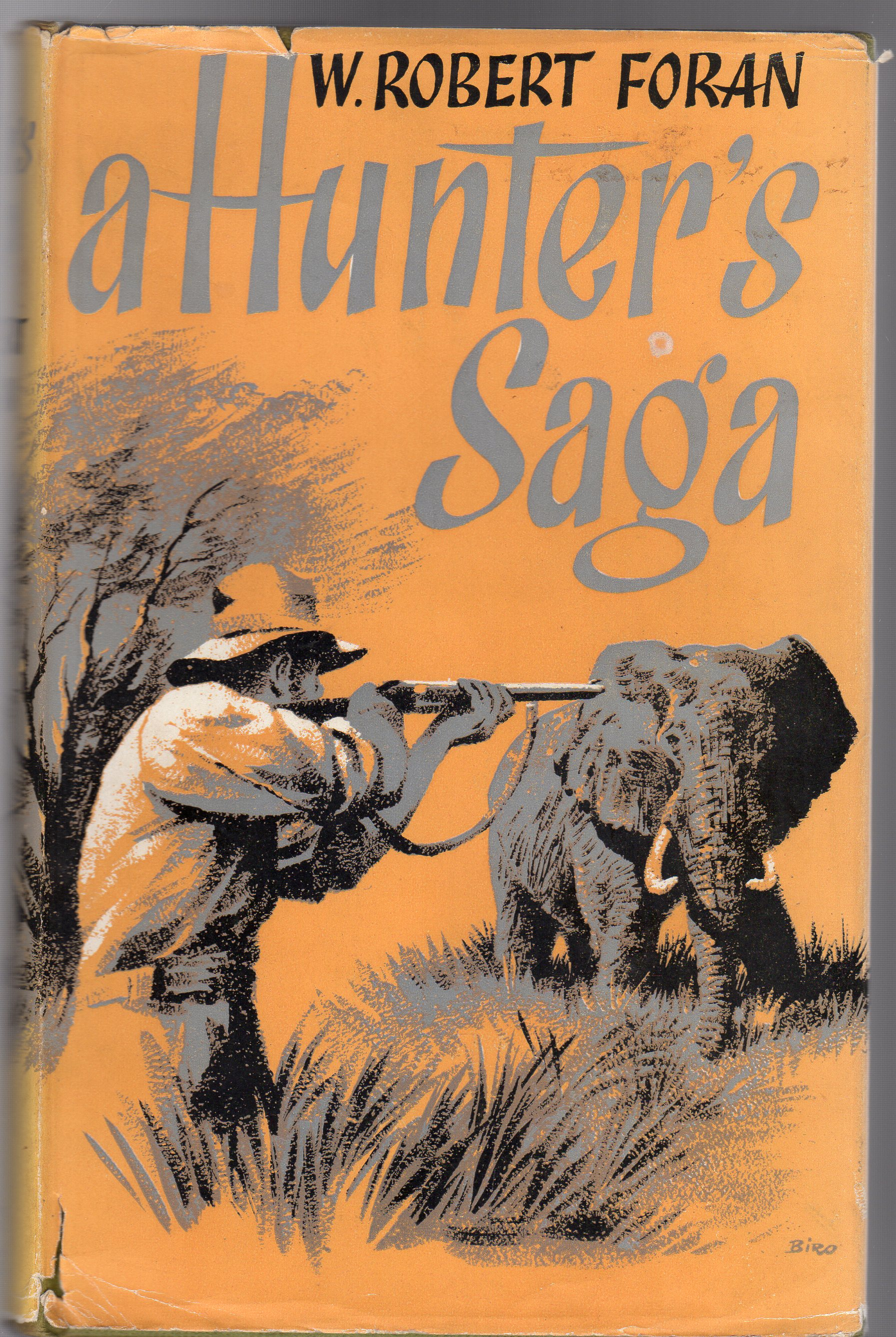 Image for A Hunter's Saga