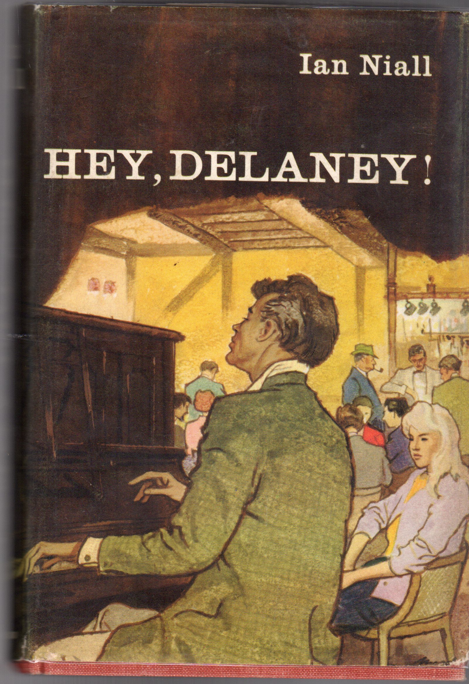 Image for Hey, Delaney !