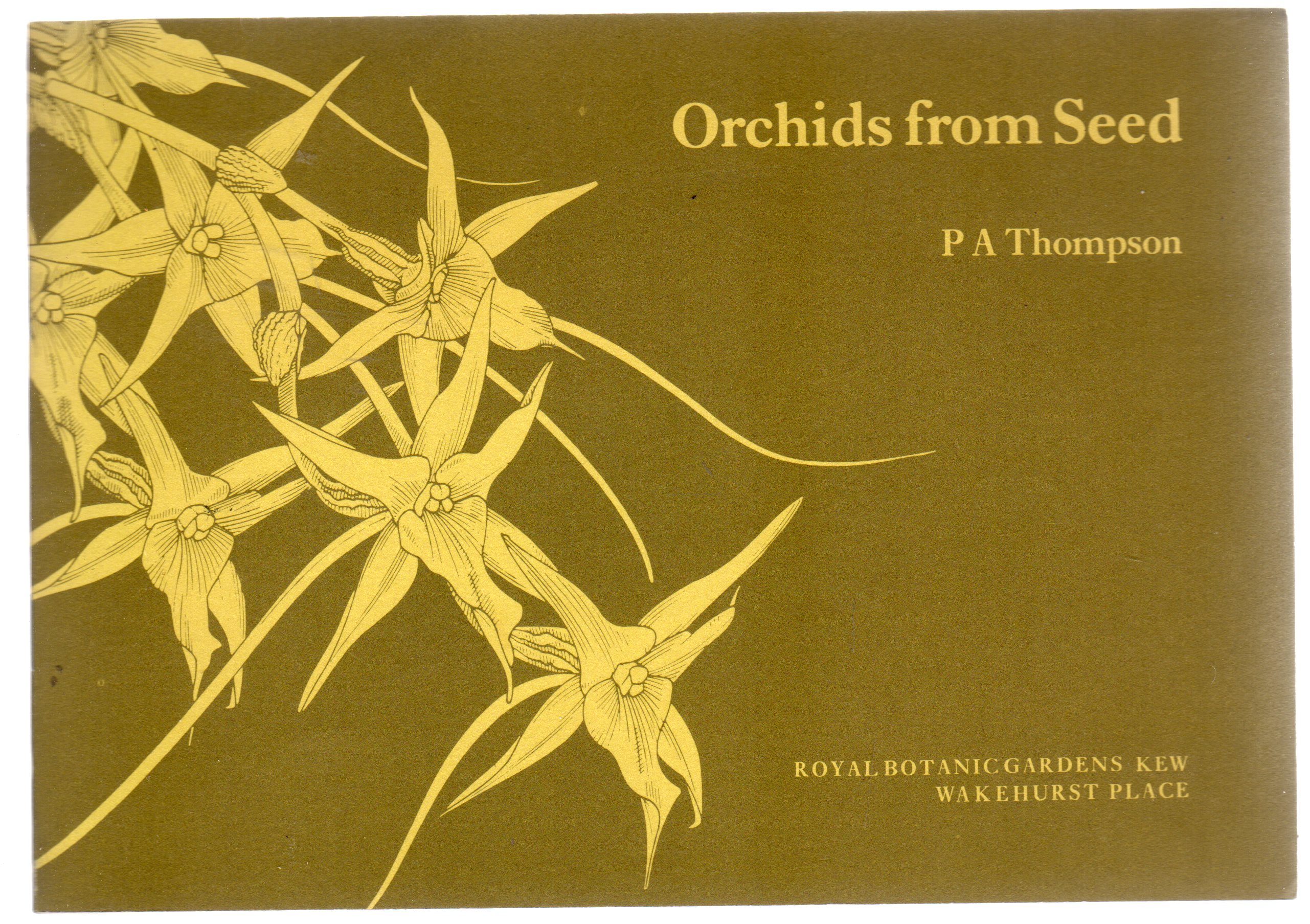 Image for Orchids from Seed