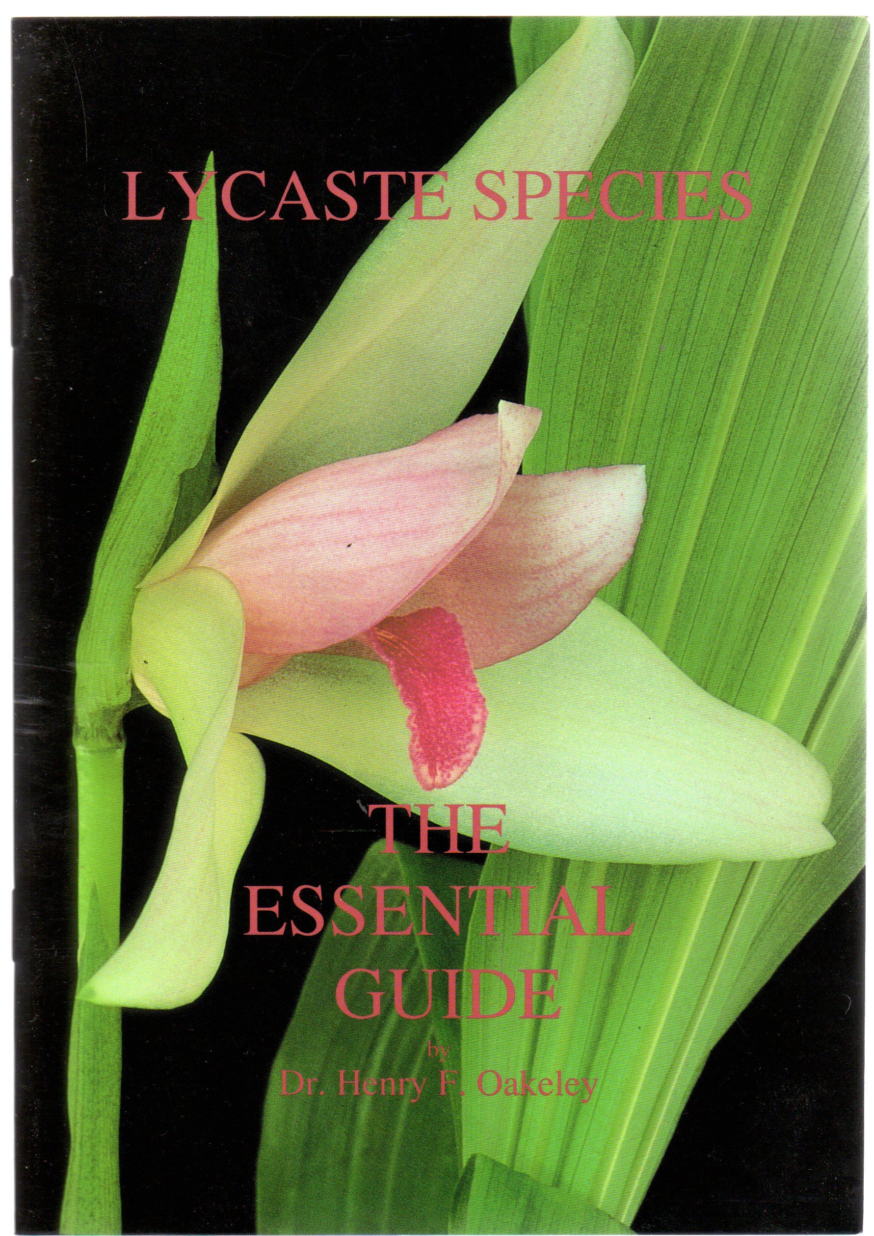 Image for Lycaste Species : The Essential Guide