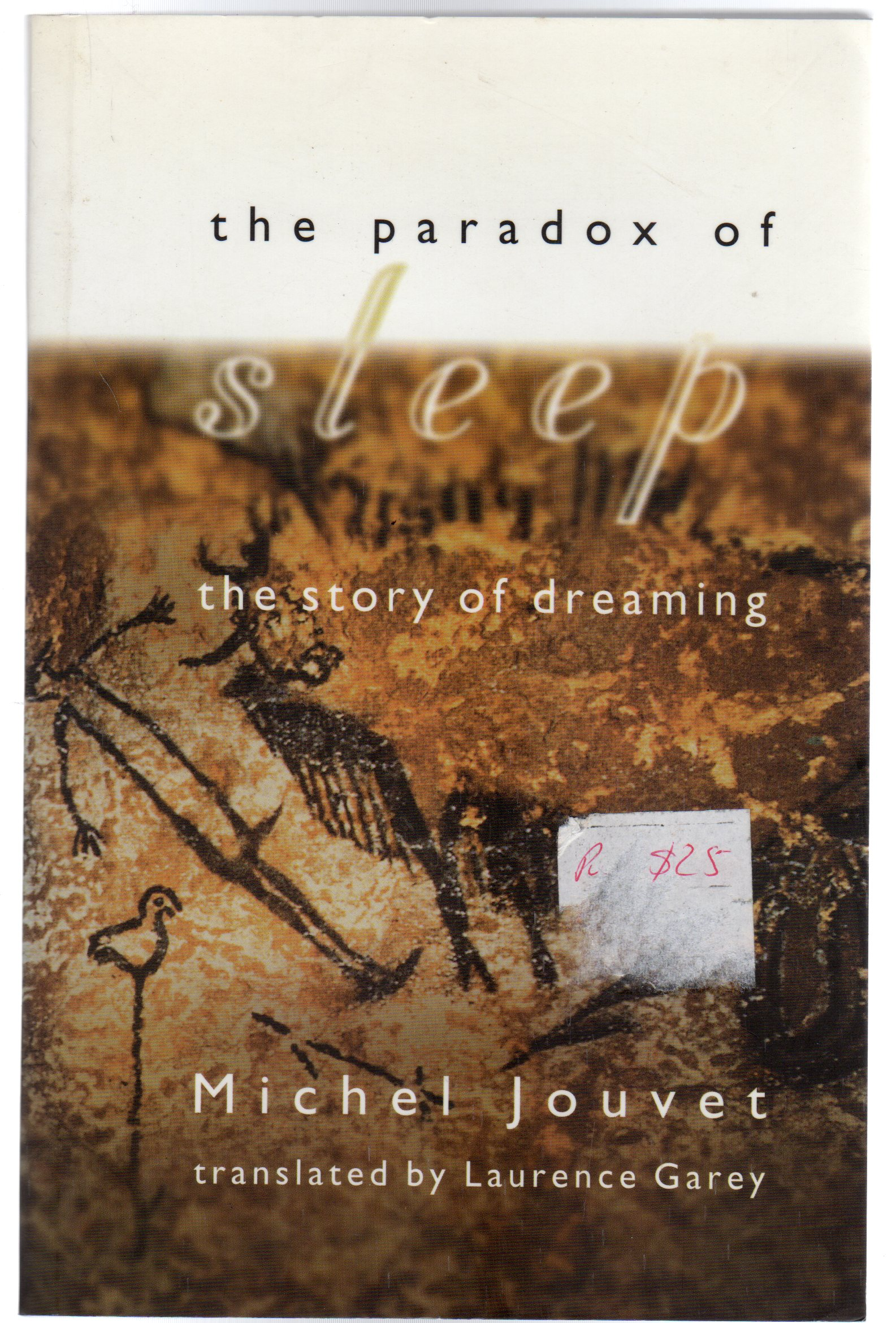 Image for The Paradox of Sleep : The Story of Dreaming