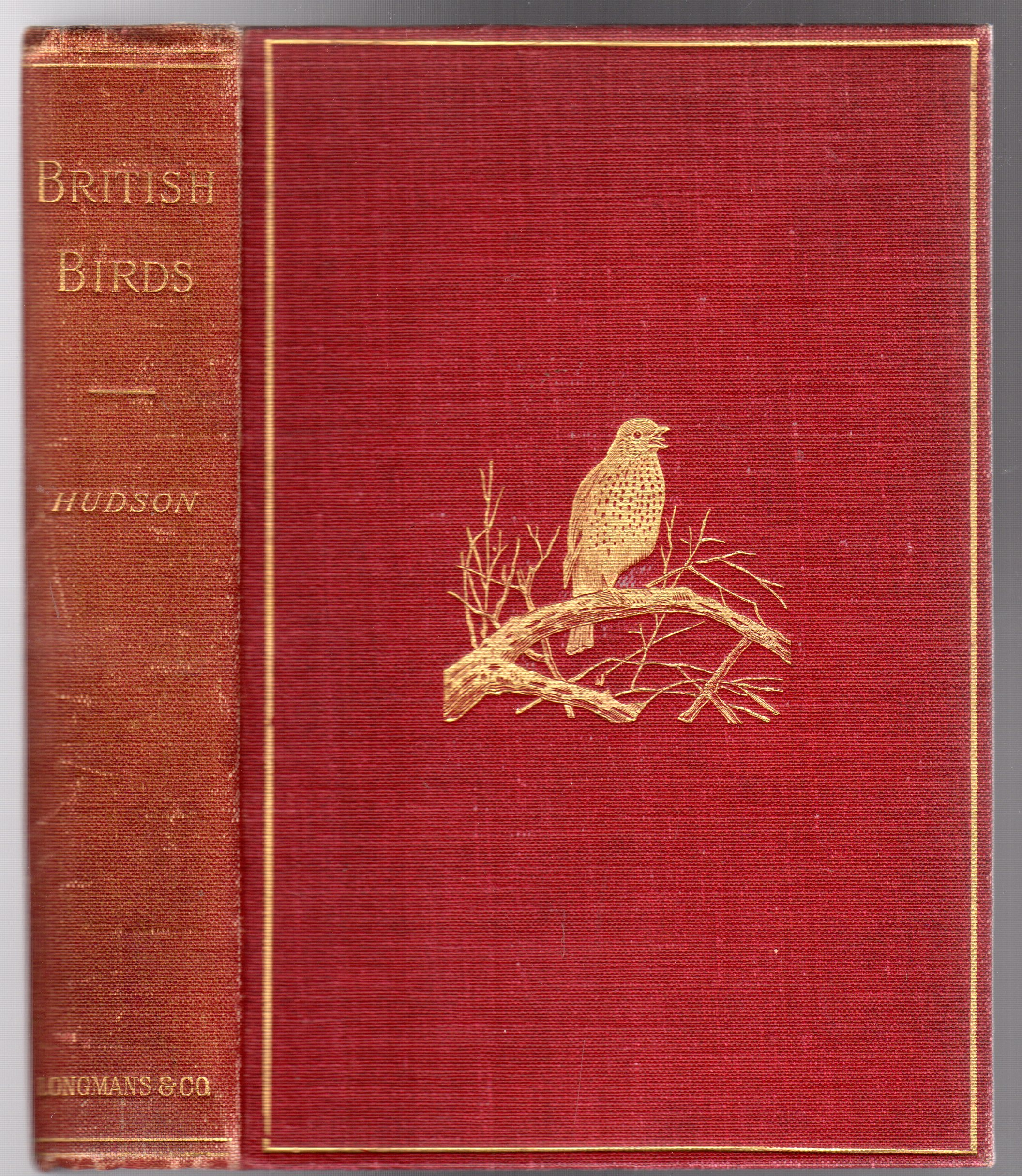 Image for British Birds