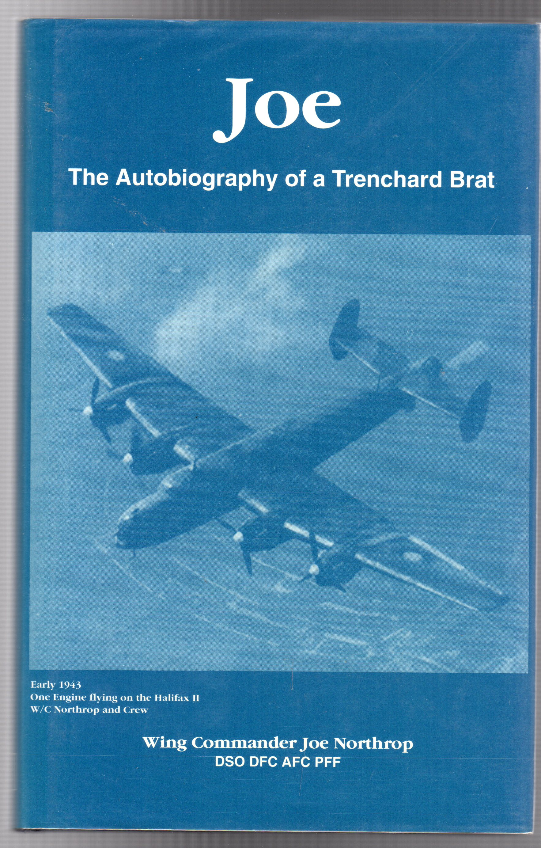 Image for Joe: The Autobiography of a Trenchard Brat
