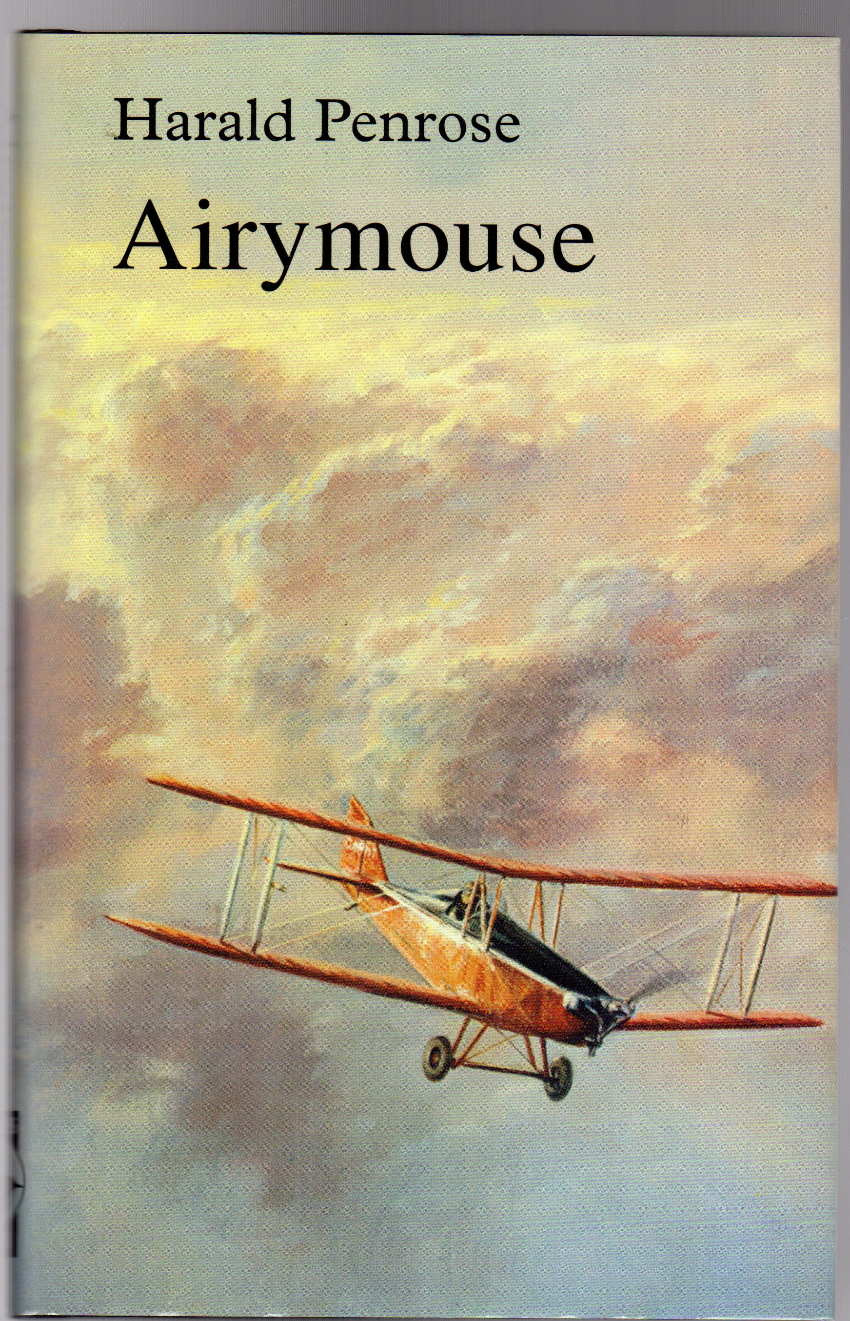 Image for Airymouse