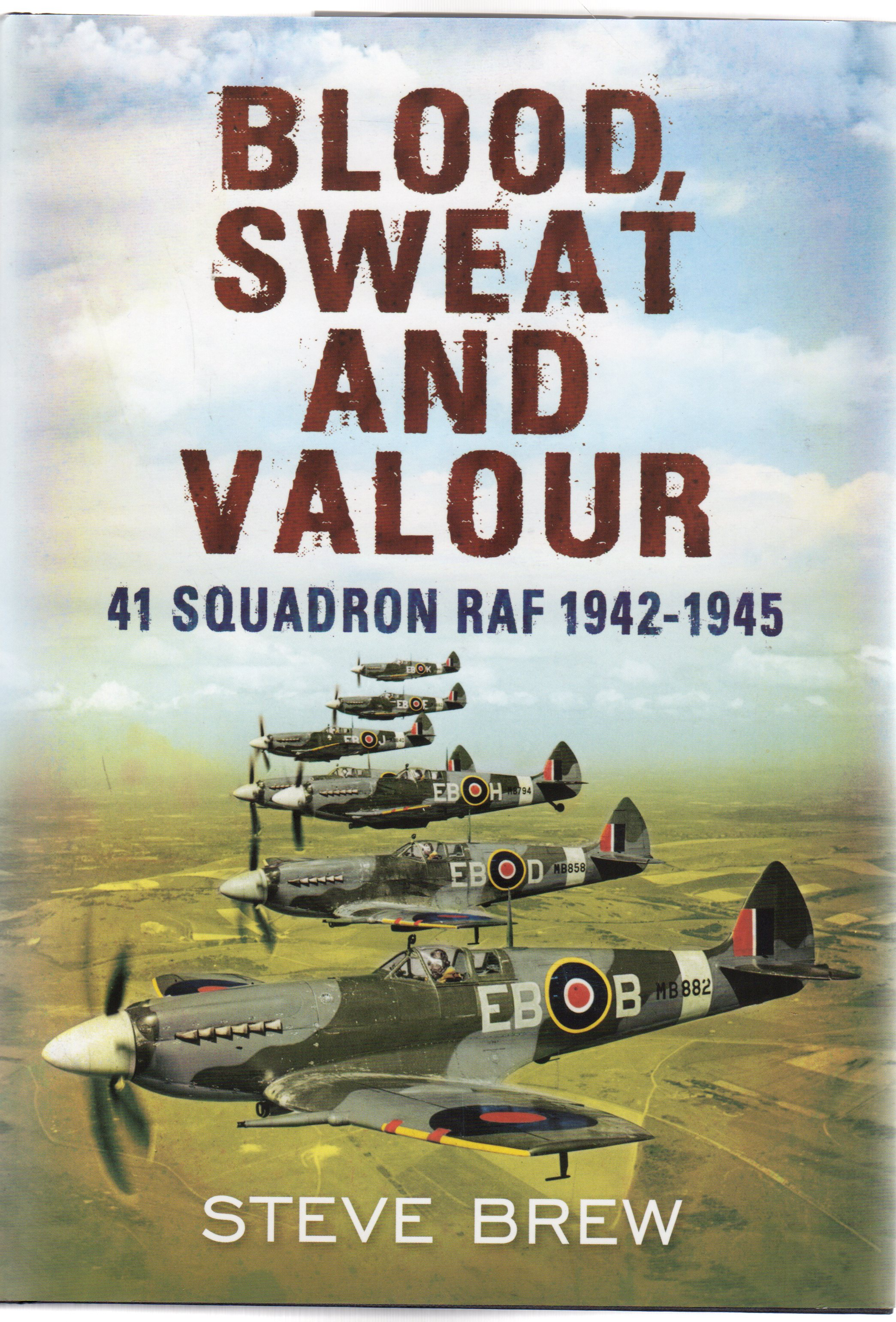 Image for Blood, Sweat and Valour : 41 Squadron RAF 1942-1945