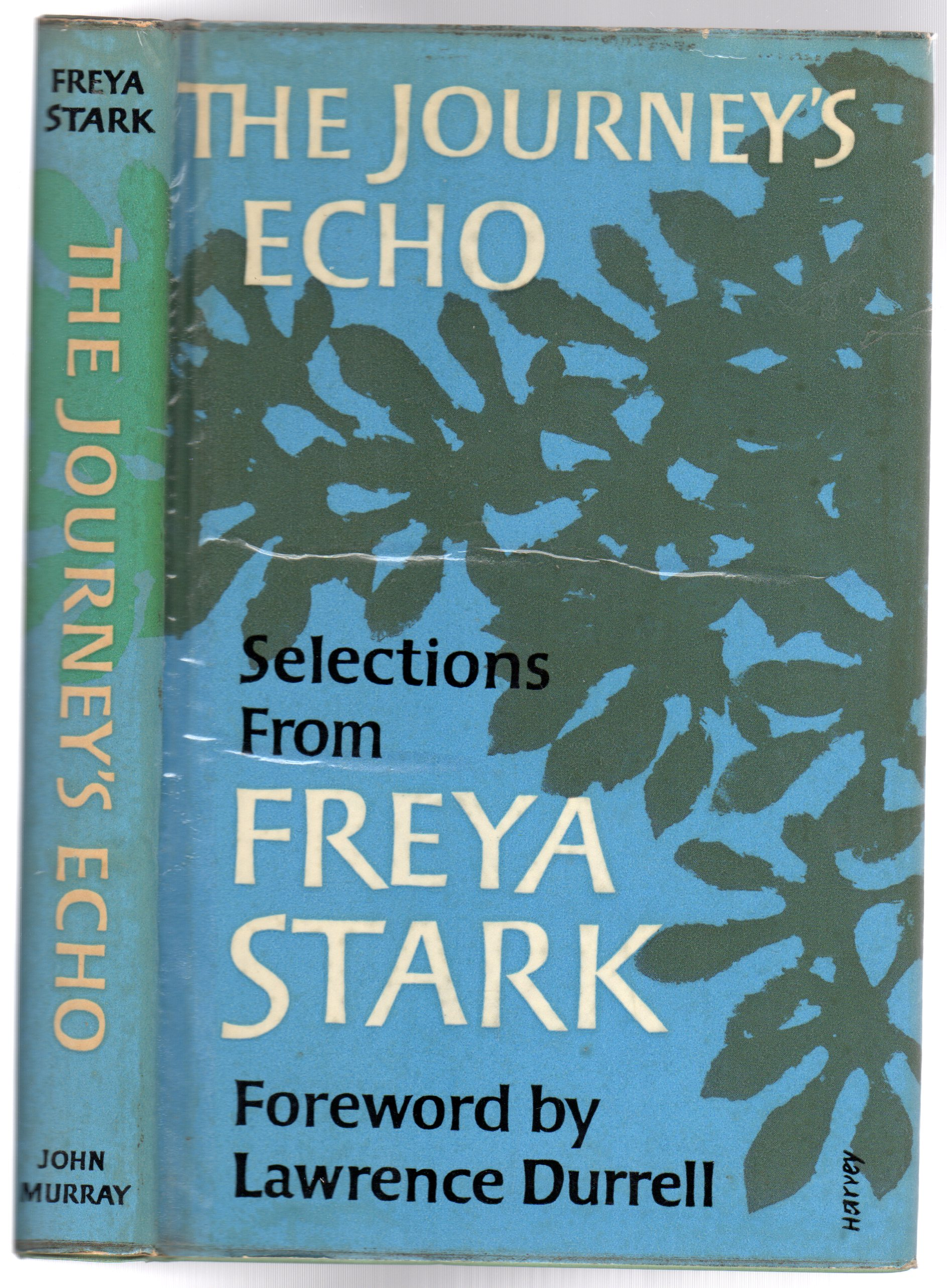 Image for The Journey's Echo
