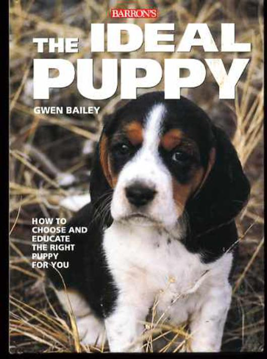 Image for The Ideal Puppy