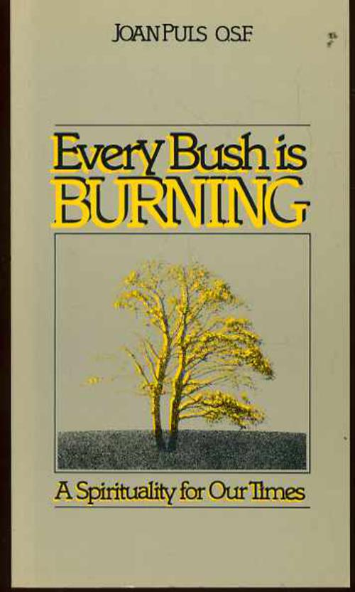 Image for Every Bush is Burning: A Spirituality for Our Times