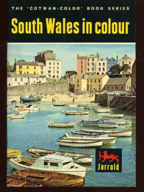 Image for South Wales in Colour