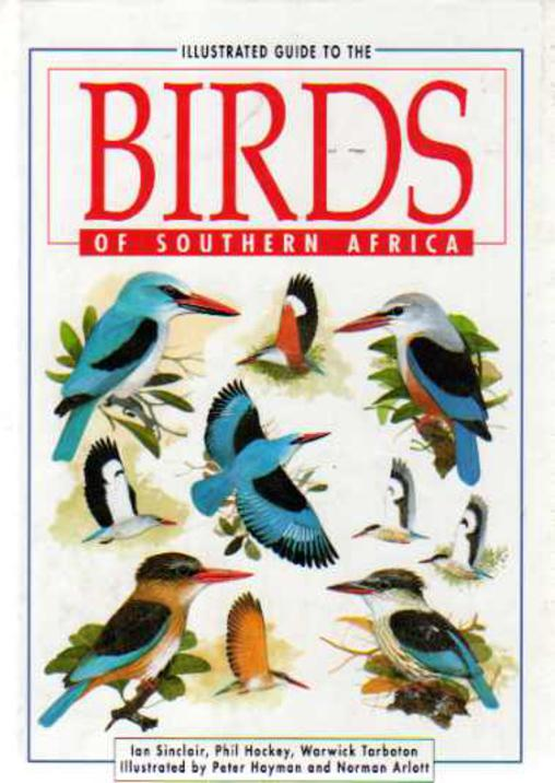 Image for Illustrated Guide to the Birds of Southern Africa