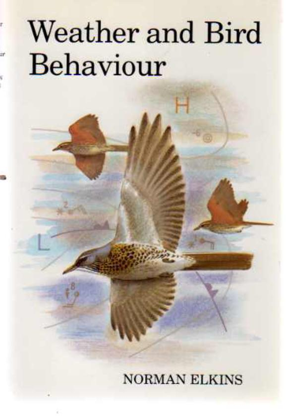 Image for Weather and Bird Behavior