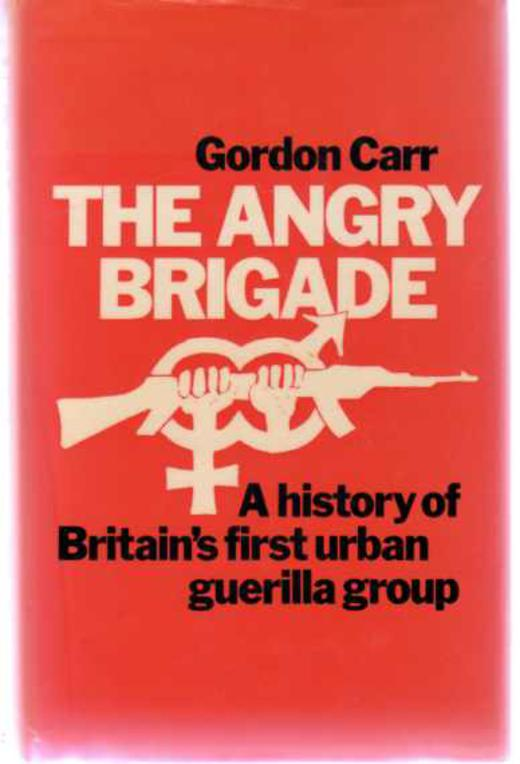 Image for The Angry Brigade - The Cause and the Case