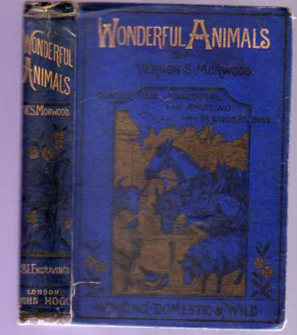Image for Wonderful Animals - Working, Domestic and Wild - Their Structure, Habits, Homes and Uses