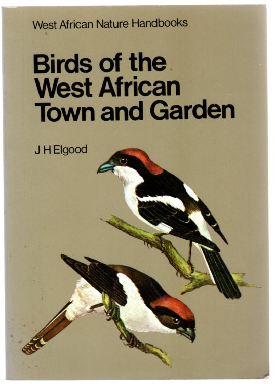 Image for Birds of the West African Town and Garden