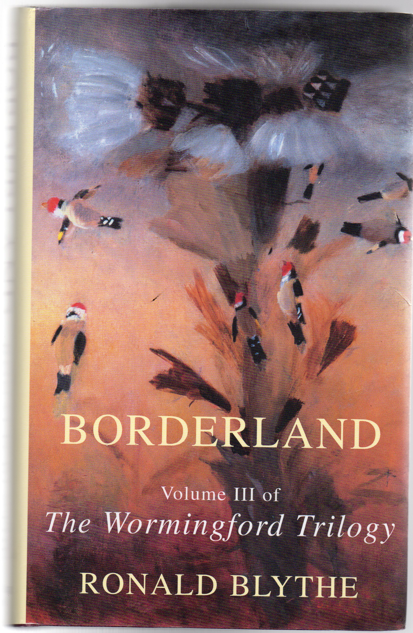 Image for Borderland : Volume III of the Wormingford Trilogy