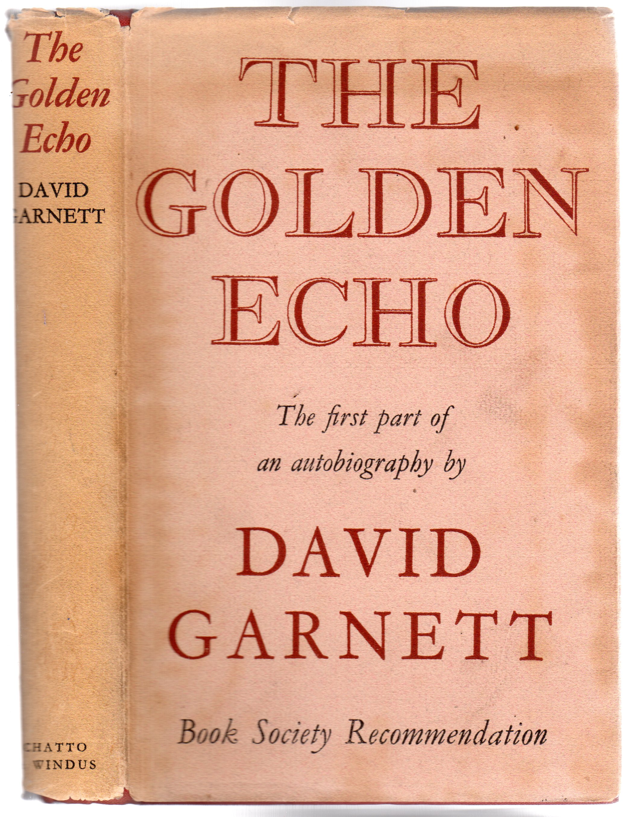 Image for The Golden Echo