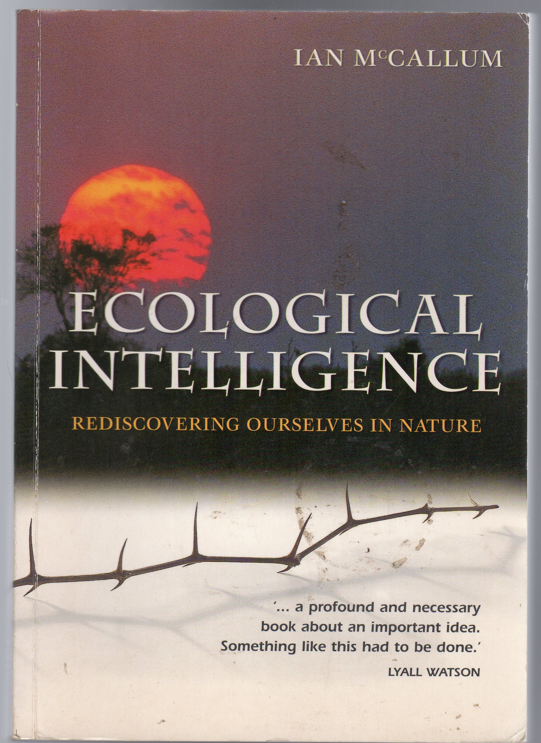 Image for Ecological Intelligence : Rediscovering Ourselves in Nature