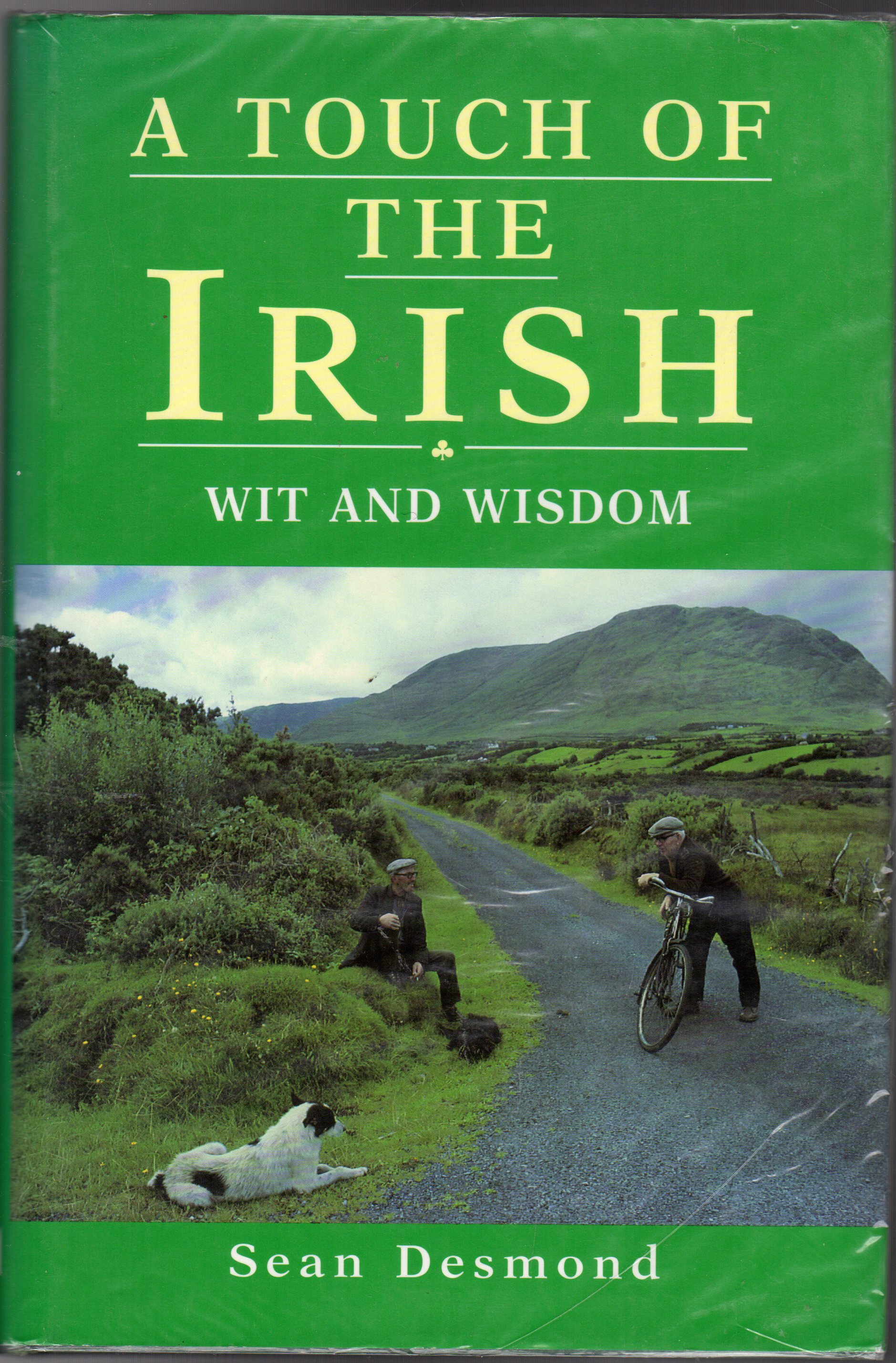 Image for A Touch of the Irish : Wit and Wisdom and a Bit o' Blarney